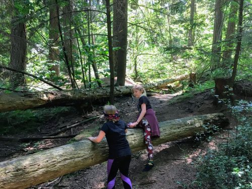 2 friends helping each other get over a big log in the forest